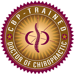chiropractic biophysics in northbrook