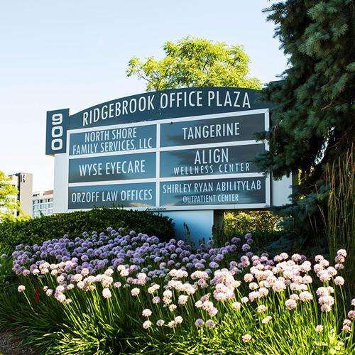 chiropractor northbrook
